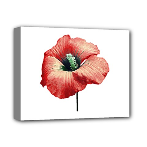 Your Flower Perfume Deluxe Canvas 14  X 11  (framed) by dflcprints