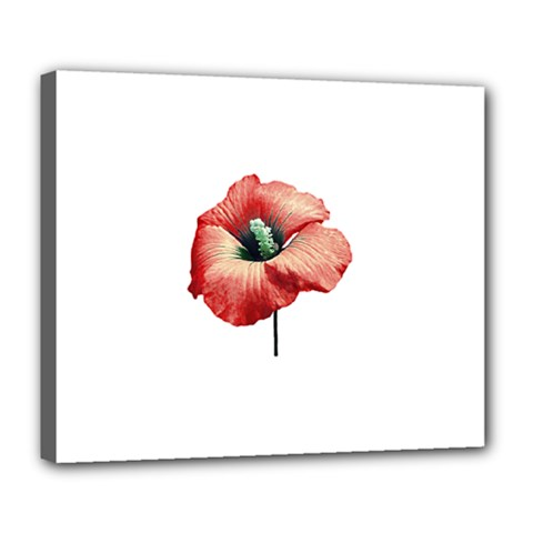 Your Flower Perfume Deluxe Canvas 24  X 20  (framed) by dflcprints