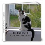 Domino - 8x8 Photo Book (20 pages)