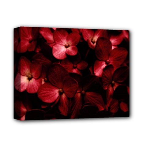 Red Flowers Bouquet In Black Background Photography Deluxe Canvas 14  X 11  (framed) by dflcprints