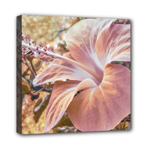 Fantasy Colors Hibiscus Flower Digital Photography Mini Canvas 8  X 8  (framed) by dflcprints