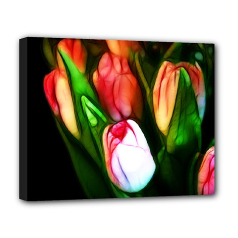 Abstract Pink Tulips Deluxe Canvas 20  X 16  (framed) by bloomingvinedesign