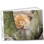 It Is Time - 9x7 Deluxe Photo Book (20 pages)