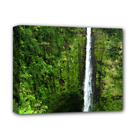 Akaka Falls Deluxe Canvas 14  X 11  (framed) by bloomingvinedesign