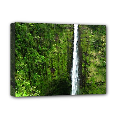 Akaka Falls Deluxe Canvas 16  X 12  (framed)  by bloomingvinedesign