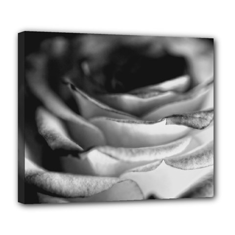 Light Black And White Rose Deluxe Canvas 24  X 20  (framed) by bloomingvinedesign