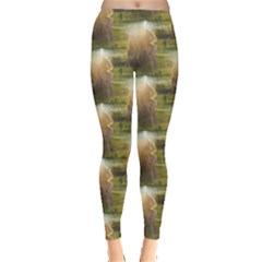 Sophia Leggings