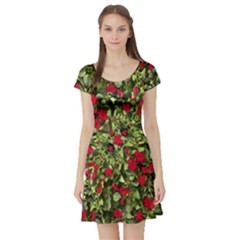 Floral Collage Print Short Sleeve Skater Dress by dflcprintsclothing