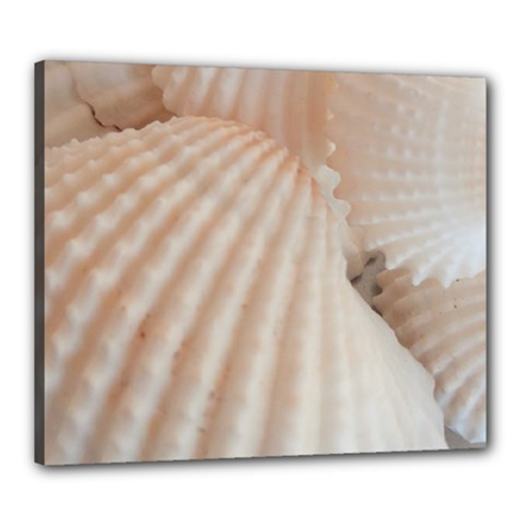 Sunny White Seashells Canvas 24  X 20  (framed) by yoursparklingshop