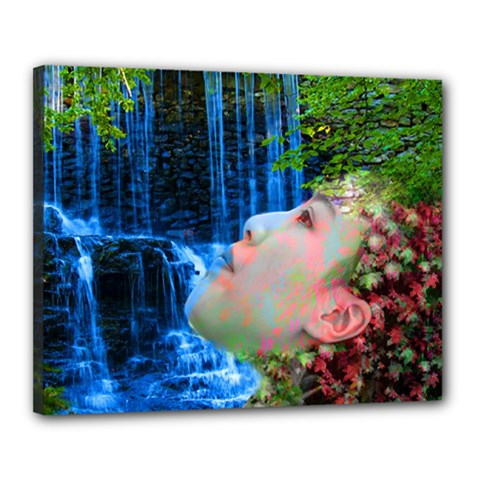 Fountain Of Youth Canvas 20  X 16  (framed) by icarusismartdesigns