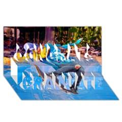 Skateboarding On Water Congrats Graduate 3d Greeting Card (8x4)  by icarusismartdesigns