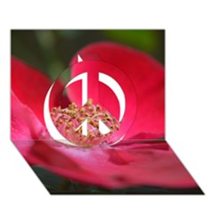 Bright Red Rose Peace Sign 3d Greeting Card (7x5)  by timelessartoncanvas