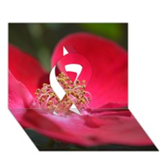 Bright Red Rose Ribbon 3d Greeting Card (7x5)