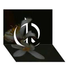 Lemon Blossom Peace Sign 3d Greeting Card (7x5)  by timelessartoncanvas