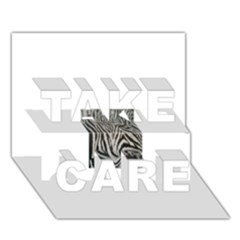 Unique Zebra Design Take Care 3d Greeting Card (7x5)  by timelessartoncanvas