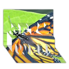 Butterfly 2 Get Well 3d Greeting Card (7x5)  by timelessartoncanvas