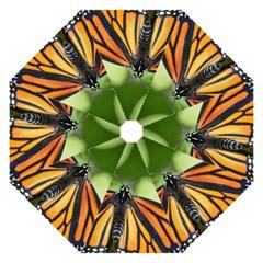 Butterfly 3 Hook Handle Umbrellas (medium) by timelessartoncanvas