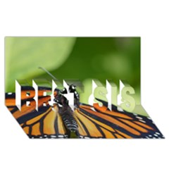 Butterfly 3 Best Sis 3d Greeting Card (8x4)  by timelessartoncanvas