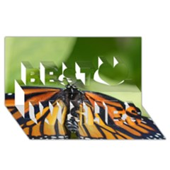 Butterfly 3 Best Wish 3d Greeting Card (8x4)  by timelessartoncanvas
