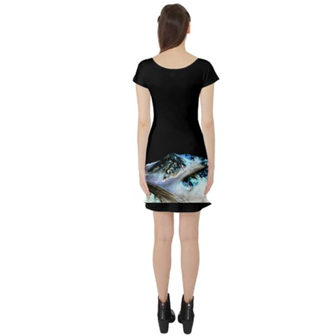 Short Sleeve Skater Dress Back