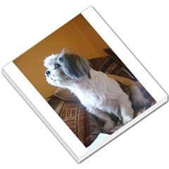 Shih Tzu Sitting Small Memo Pads by TailWags