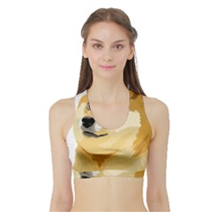 Dogecoin Women s Sports Bra With Border by dogestore