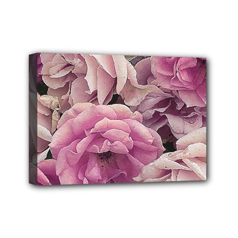 Great Garden Roses Pink Mini Canvas 7  X 5  by MoreColorsinLife