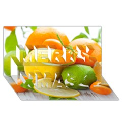 Citrus Fruits Merry Xmas 3d Greeting Card (8x4)  by emkurr
