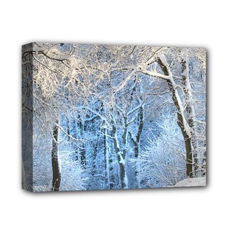 Another Winter Wonderland 1 Deluxe Canvas 14  X 11  by MoreColorsinLife