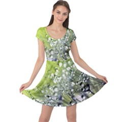 Dandelion 2015 0714 Cap Sleeve Dresses