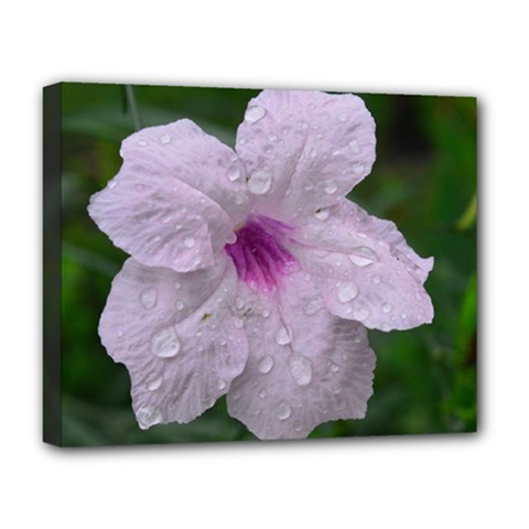 Pink Purple Flowers Deluxe Canvas 20  X 16   by timelessartoncanvas
