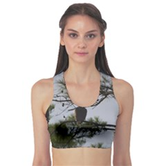 Bald Eagle 4 Sports Bra by timelessartoncanvas