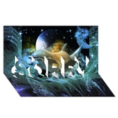 Funny Dolphin In The Universe Sorry 3d Greeting Card (8x4)