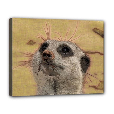 Meerkat 2 Canvas 14  X 11  by ImpressiveMoments