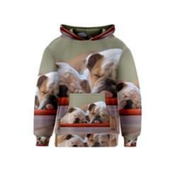 2 Sleeping Bulldogs Kid s Pullover Hoodies by TailWags
