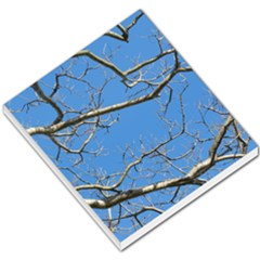 Leafless Tree Branches Against Blue Sky Small Memo Pads by dflcprints
