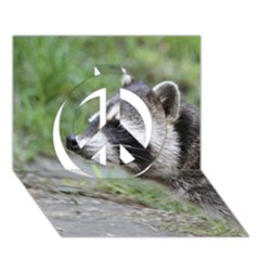 Racoon 1115 Peace Sign 3d Greeting Card (7x5)