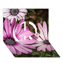 Beautiful Colourful African Daisies  Peace Sign 3d Greeting Card (7x5)  by OZMedia