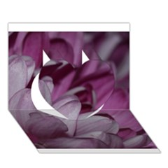 Purple! Heart 3D Greeting Card (7x5)  by timelessartoncanvas