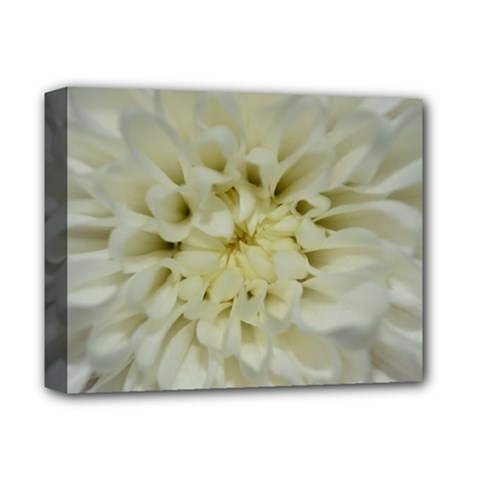 White Flowers Deluxe Canvas 14  x 11  by timelessartoncanvas