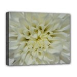 White Flowers Deluxe Canvas 20  x 16