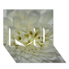 White Flowers I Love You 3d Greeting Card (7x5)  by timelessartoncanvas