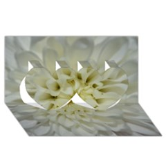 White Flowers Twin Hearts 3d Greeting Card (8x4)  by timelessartoncanvas