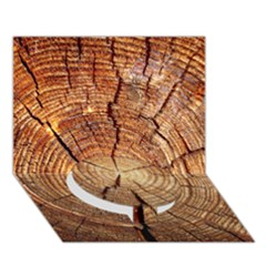 Cross Section Of An Old Tree Circle Bottom 3d Greeting Card (7x5)