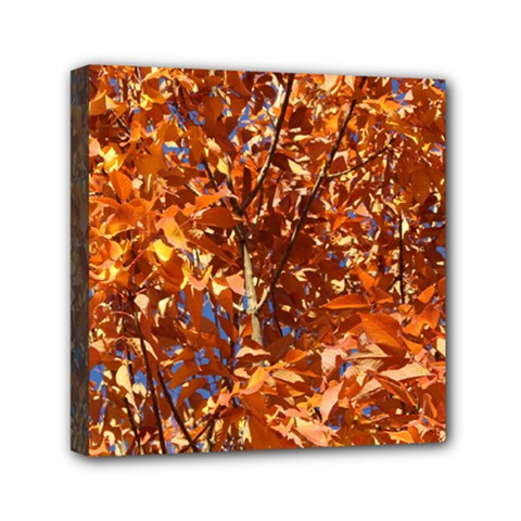 Orange Leaves Mini Canvas 6  X 6  by trendistuff