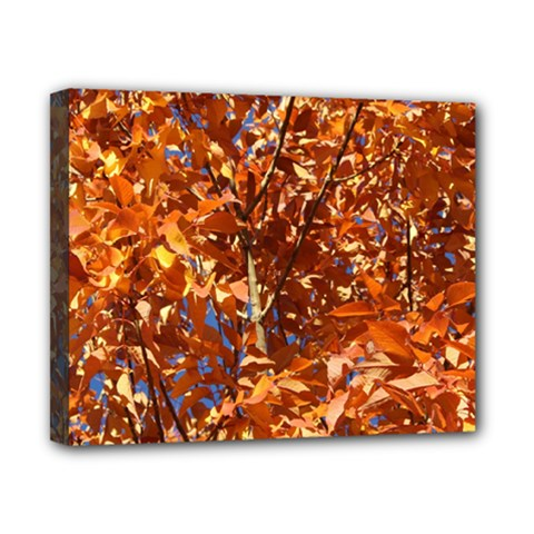 Orange Leaves Canvas 10  X 8  by trendistuff