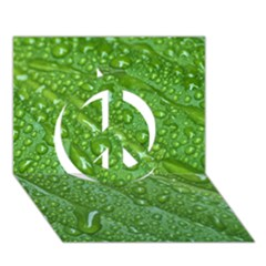 Green Leaf Drops Peace Sign 3d Greeting Card (7x5)