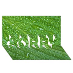 Green Leaf Drops Sorry 3d Greeting Card (8x4)  by trendistuff