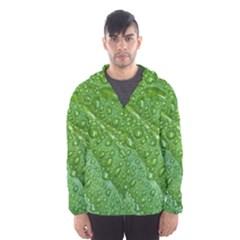 Green Leaf Drops Hooded Wind Breaker (men) by trendistuff
