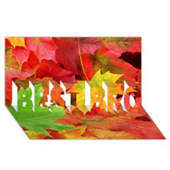 Autumn Leaves 1 Best Bro 3d Greeting Card (8x4)  by trendistuff